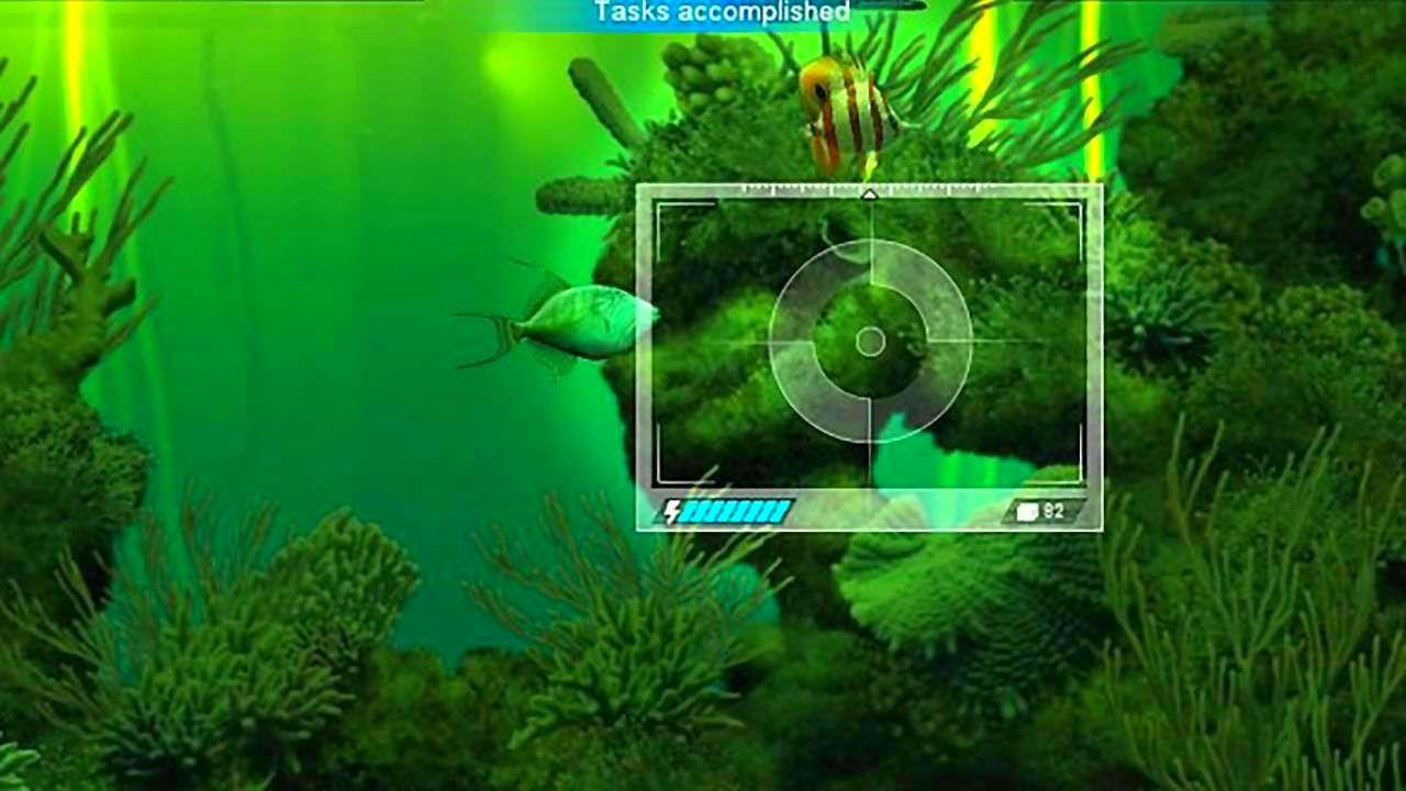 CaribbeanSeaFishes_SS_09.jpg