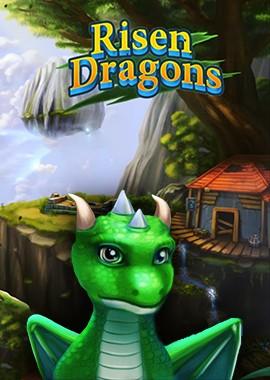 Risen-Dragons-Box-Image.jpg