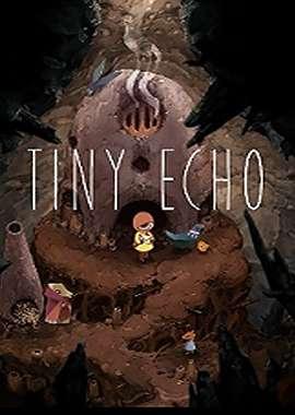 Tiny-Echo-Box-Image.jpg