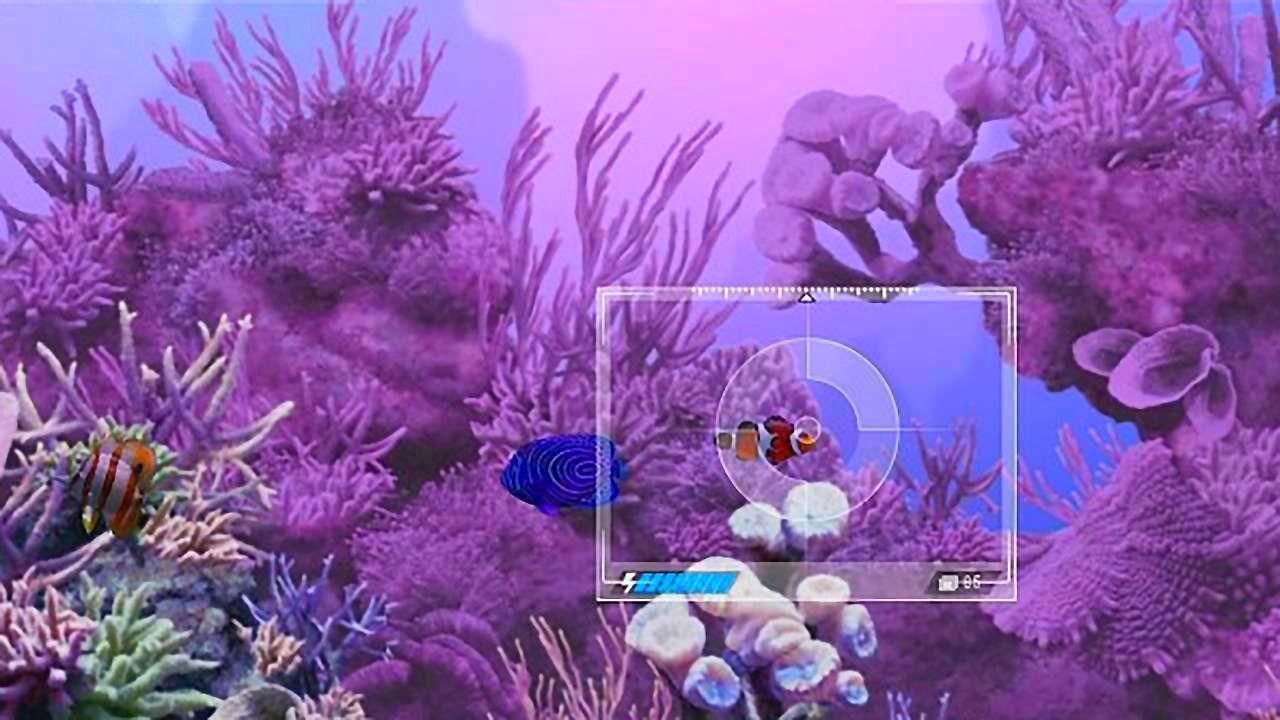 CaribbeanSeaFishes_SS_07.jpg