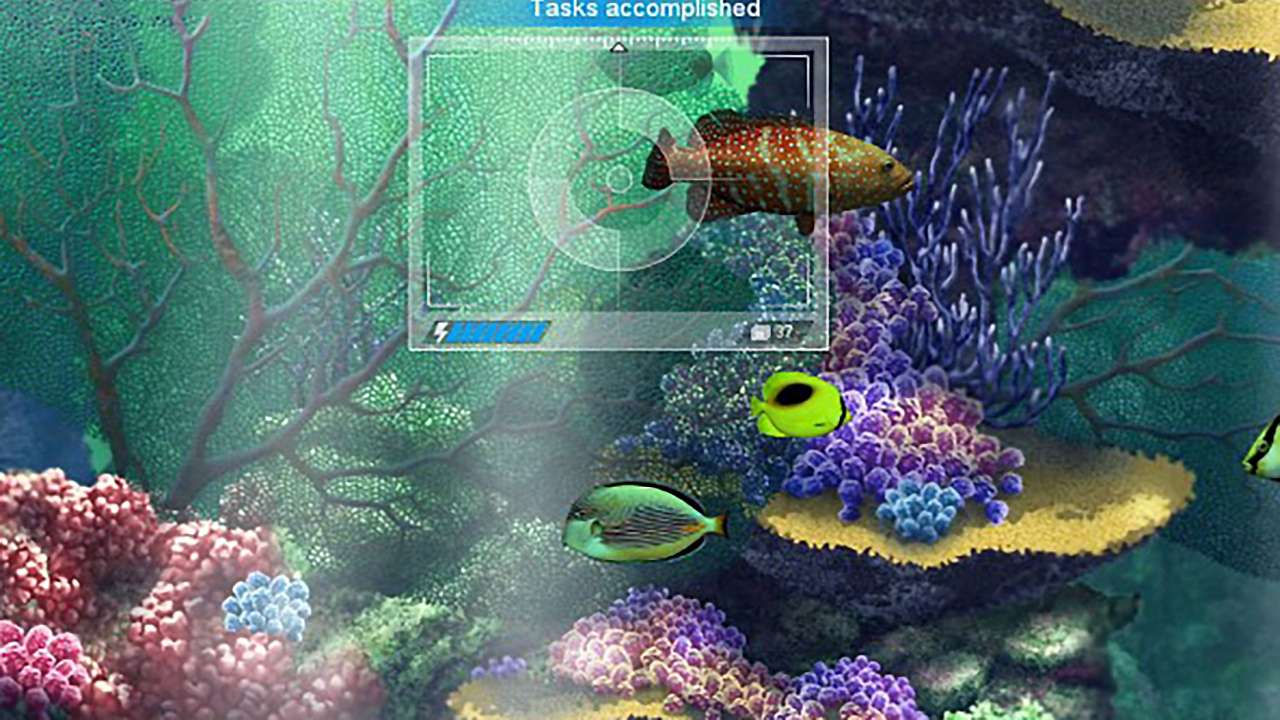 Caribbean-Sea-Fishes-Screenshot-01.jpg